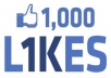 I will give you 1000+ Facebook Like to Your Facebook Fanpage