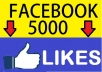 add 5000 real active likes to your fanpage