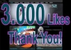send you 3000 likes to your Facebook fan page in less than a day