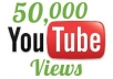 give you guaranteed  50000+ youtube views to your video in 24 hours