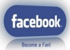USA 600 fb Fan page LIKE, 50 USA followers, 10 post sharing