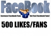 Give You 500+ *High Quality & Staying* Facebook Likes