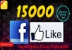 Give You GUARANTEED 15000+ High Quality Facebook Fans On Your Page Just