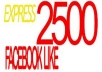 I will provide Real Human Verified 2000+ High Quality Facebook Likes for your any Fanpage within 13 days only