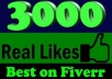 I will provide Real Human Verified 2500+ High Quality Facebook Likes for your any Fanpage within 16 days only