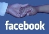 give you 2100+ High Quality Facebook Likes on you fanpage