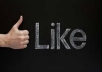 I will provide Real Human 3000+ High Quality Facebook Likes for your any Fanpage within 20 days only