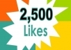 provide you 2500++ High Quality Facebook Likes on you website
