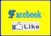 DELIVER 3500 + Facebook Like Fan Page Without Password