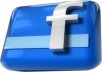 add 385+ more facebook fans likes to your fanpage only