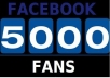 provide 5000+ USA Facebook likes to your fanpage in less than a day