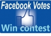 manage 100 facebook vote for any contest,website even photo