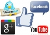 provide you  1000 real Facebook or Twitter followers / 1000 real Facebook or Youtube likes within 48 hrs