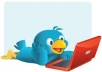give you 1500+ twitter followers within 24 hours