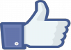 I will Give You SUPERFAST 100.000 + LIKES REAL HUMAN FACEBOOK LIKES