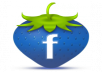 provide you pure 500 FB likes
