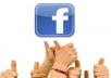 provide 20,000++ High Quality Facebook Likes on you website
