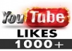 will provide You, Real Human Verified 1000+ High Quality YouTube Video Likes  for your any YouTube Video within 6 days only