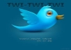 I will Give you *680* Twitter Followers on your page only