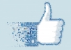 Provide 10,000 Facbook Fan Page Likes in 1 Day