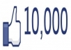give you 10000+ ( Permanent) Facebook Fans/Likes 100% real & active on you website