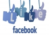 I will deliver 5000+ High Quality Facebook Likes To Your Fanpage within 2 days