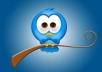 add 7000 twitter followers[Stay] to your twitter in 24 hours,dont lost followers