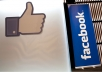 give you 532+ facebook likes,100% real and active user