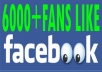 6,000+ Real looking active facebook likes to your fan page