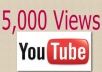 I will deliver 5,000 Views to your Youtube videos
