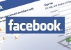 send you 1100+ USA likes to your Facebook fan page in less than a day