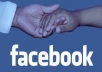 give 1400+ permanent facebook likes on your fanpage fastly