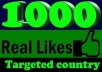will add 1000+[Real] Facebook like to your facebook likes fan page,no fake,no bot
