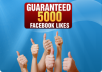 i will give 5000+ facebook likes to your fanpage
