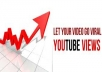 I will give you 50,000+ 50k+ DRIP FEED (slow) youtube views over 2 weeks