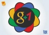 Give *100+30* Real & Active Google+1 Vote on your site only