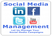 Manage Your Social Network Accounts, Facebook, Twitter, Pinterest, Linkedin on a Daily Basis