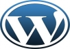 WordPress Website/Blog Setup with theme and 5 essential plugins