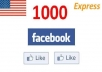 add 1000 High Quality USA Facebook Likes, Fans to your fanpage within 24 hours...!!!!