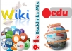 91,000 backlinks mix of wiki, social, edu and Blog comments