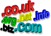 provide any type of domain registration for one year