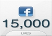 Give You 15000+ High Quality Facebook Fans On Your Page