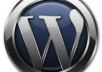 I will solve your Wordpress blogs css,html and other wordpress issues@!@