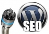 I will install Wordpress with your Theme and help Optimized your SEO with Necessary Plugins @!@