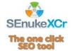 I will give you Senuke XCR Software