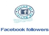 provide You, Real Human Verified 700+ High Quality Facebook Followers for your any Fanpage