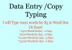 type your Scanned PDF,Photo,Image to Word,Excel and txt 1000 words