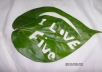 I will embose your message on the Natural Leaf