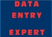 deliver all your data entry jobs in 2 days