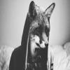 FoxGiven